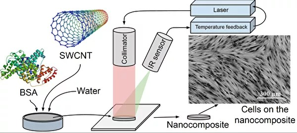 nanocomposite.jpg